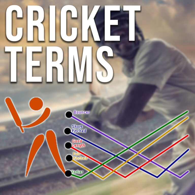 Cricket Terms I Terms Used In Cricket I Cricket Terminologies